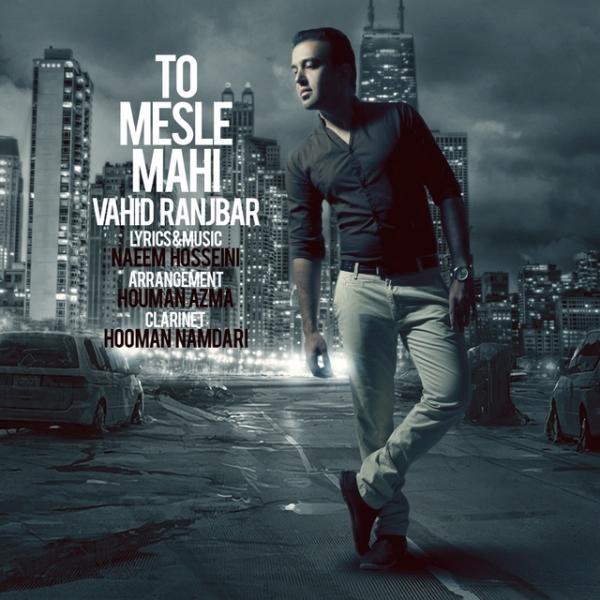 Vahid Ranjbar - To Mesle Mahi