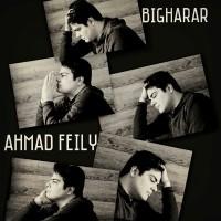 Ahmad-Feily-Bigharar