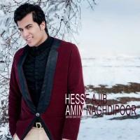 Amin-Naghdipoor-Hesse-Ajib