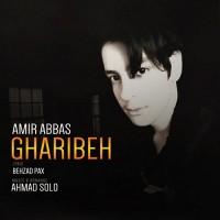 Amir-Abbas-Gharibeh