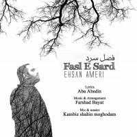 Ehsan-Ameri-Fasle-Sard