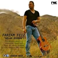 Farzam-Feiz-Delam-Mikhad