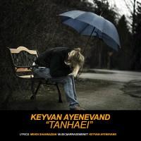 Keyvan-Ayenevand-Tanhaei