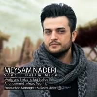 Meysam-Naderi-Delam-Mige