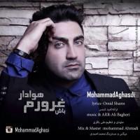 Mohammad-Aghasi-Havadar