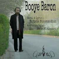 Mojtaba-Mohammadian-Booye-Baroon