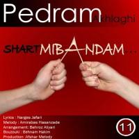 Pedram-Akhlaghi-Shart-Mibandam