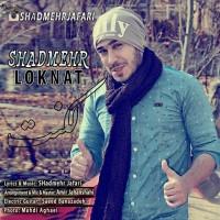 Shadmehr-Loknat