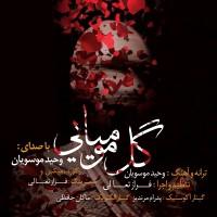 Vahid-Mousavian-Gole-Mumiyaee