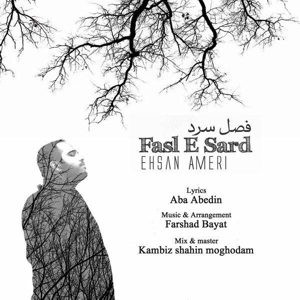 Ehsan Ameri - Fasle Sard