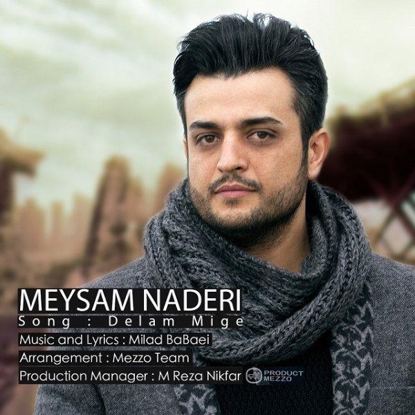 Meysam Naderi - Delam Mige