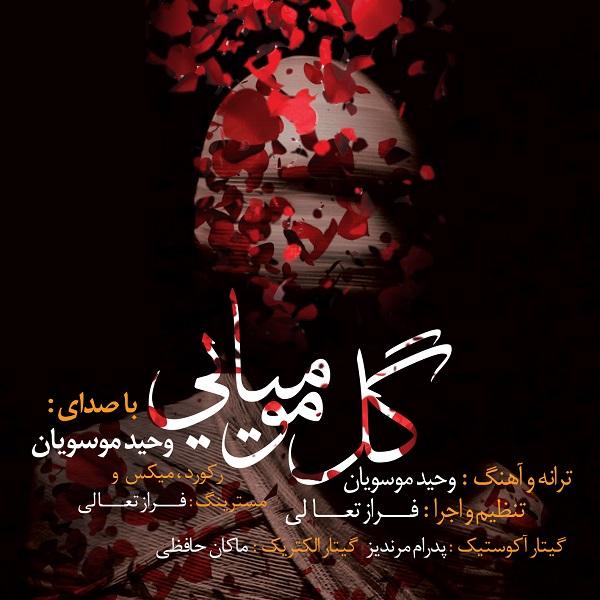 Vahid Mousavian - Gole Mumiyaee