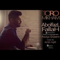 Abolfazl-Fallah-Toro-Mikham