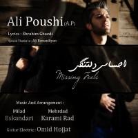 Ali-Poushi-(AP)-Ehsase-Deltangi