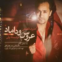 Alireza-Lotfi-Aroos-Doomad-(Ft-Farshad-Vali)