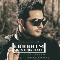 Ebrahim-Banihashemi-Toro-Doss-Daram