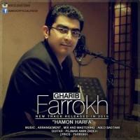 Farrokh-Hamon-Harfa