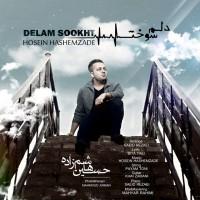 Hossein-Hashemzade-Delam-Sookht
