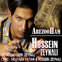 Hossein-Zeynali-Arezoham