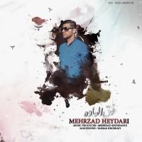 Mehrzad-Heydari-Fogholadeh
