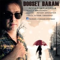Meysam-Jamshidpour-Dooset-Daram