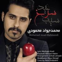 Mohammad-Javad-Mahmoodi-Sibe-Sorkhe-Eyd