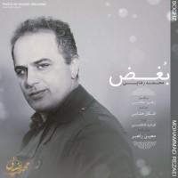 Mohammad-Rezaei-Boghz
