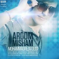 Mohammadreza-Tousi-Aroom-Misham