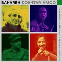 Mohsen-Namjoo-Bahareh-Dokhtar-Amoo