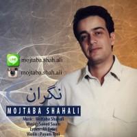 Mojtaba-Shah-Ali-Negaran