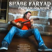 Pedram-Nikaeen-Shabe-Faryad