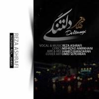 Reza-Ashrafi-Deltangi