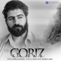 Sahab-Goriz