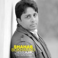 Shahab-Bokharaei-Hesse-Ajib