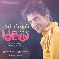 Shahryar-Nik-I-Love-You