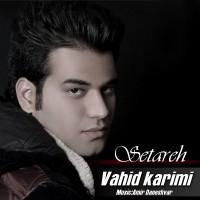 Vahid-Karimi-Setareh