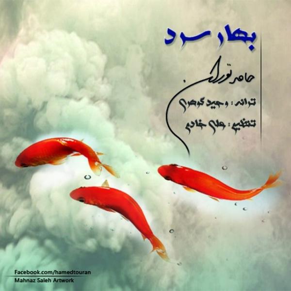 Hamed Touran - Bahare Sard