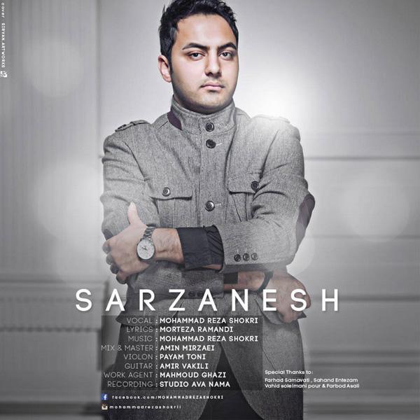 Mohammad Reza Shokri - Sarzanesh