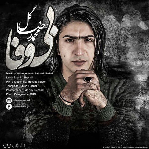 Mohammadreza Gol - Bivafa