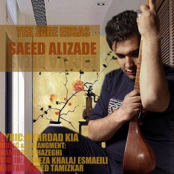 Saeed Alizade - Yek Zare Ehsas