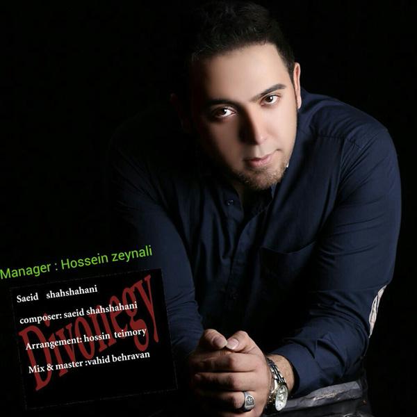 Saeid Shahshahani - Divoonegi