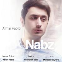 Armin-Habibi-Nabz