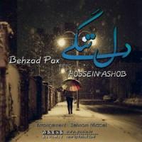 Behzad-Pax-Deltangi-(Ft-Hossein-Ashoob)
