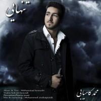 Mohammad-Kamyabi-Tanhaie