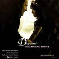 Mohammadreza-Moravvej-Donyami