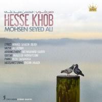 Mohsen-Seyed-Ali-Hesse-Khoob