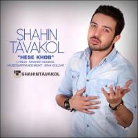 Shahin-Tavakol-Hesse-Khob