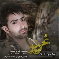 Vahid-Dendi-Gharibeh-(Ft-Mohammad-Shams)
