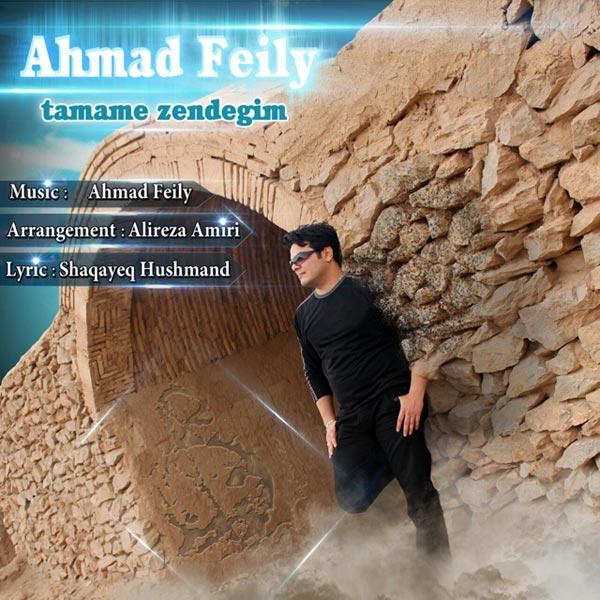 Ahmad Feily - Madar