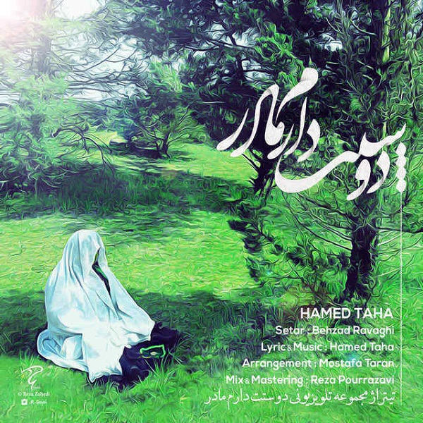 Hamed Taha - Madar